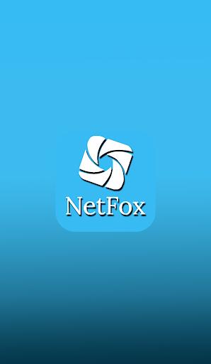 NetFox screenshot 1