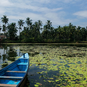 Pond and the boat by Arun Karanth - Transportation Boats ( water, clean, blue, beautiful, india, transportation, scenic, leaves, boat, pond, karnataka )