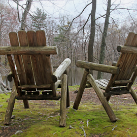 Chairs by Bob Slitzan - Artistic Objects Furniture ( wood, relax, chairs, furniture, landscape, tree, nature, seat, foliage, pond, water, peaceful, park, green, traditional, lake, leisure, armchair, chair, wooden, serene, outdoor, trees, view, outside )