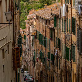 Siena by Mario Horvat - City,  Street & Park  Street Scenes ( houses, toscana, italia, street, windows, siena )