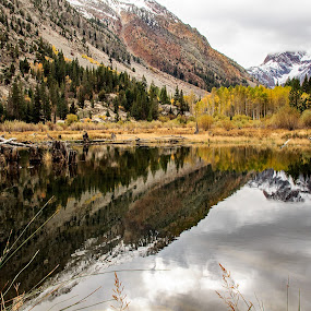 Fall in the Mountains by Randi Hodson - Landscapes Mountains & Hills ( clouds, reflection, mountains, autumn, trees, lake,  )