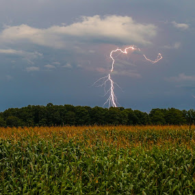 On An Old Country Road by Bob Minnie - Landscapes Weather ( lightning, cornfield, storm, weather, thunderstorm )