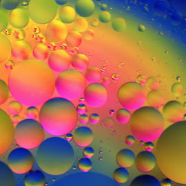 Neon Worlds by Janet Herman - Abstract Macro ( water, abstract, oil drops, colors, neon, ellipses, floating, orbs, worlds, oil )