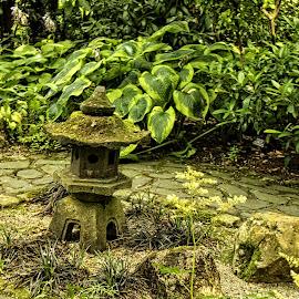 BRND garden scene 11 by Michael Moore - City,  Street & Park  City Parks