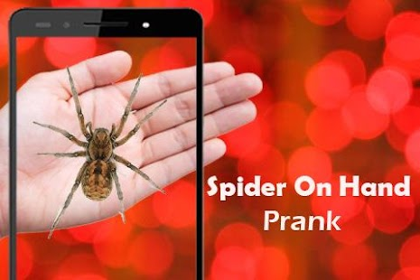 Spider On Hand Camera Prank - screenshot