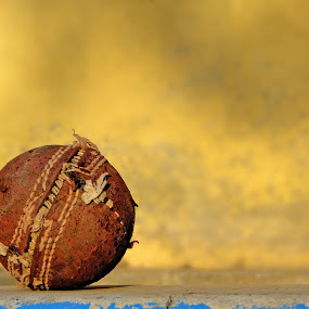 retired by Vatsal Patel - Sports & Fitness Cricket ( sony, ball, stiches, cricket, retired, india, game, torn )