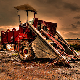 Sugarcane Harvester by Ron Olivier - Digital Art Things ( sugarcane harvester )