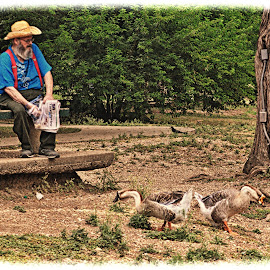 ---------Feeding the Ducks------ by Neal Hatcher - People Portraits of Men