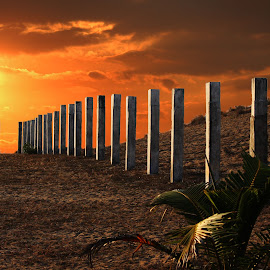 The Lighted Fence by Mrinmoy Ghosh - Buildings & Architecture Architectural Detail (  )