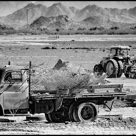 Dodge Truck by Dave Lipchen - Black & White Objects & Still Life ( dodge truck )