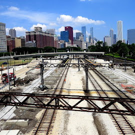 Chicago, IL by Donalee Eiri - Buildings & Architecture Bridges & Suspended Structures