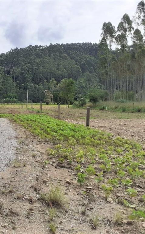 Terreno à venda, 1746 m² por R$ 150.000 - Oliveira - Tijucas/SC