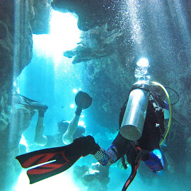 cave diving by AB Rossouw - Nature Up Close Water ( water, blue, scuba, cave, rocks, diving )