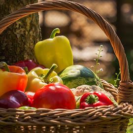 vegetables by Dumitru Doru - Food & Drink Fruits & Vegetables ( fresh, vegetables, garden, light, natural )
