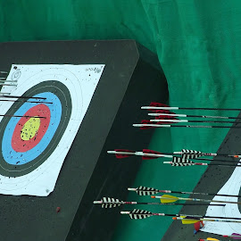 Hit the Target by Jakab Robert - Sports & Fitness Other Sports ( archery, arrow, target, sport, group )