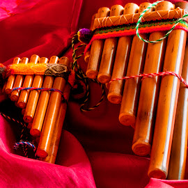 by Luz UK - Artistic Objects Musical Instruments