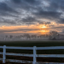 Foggy Morn by Joe Hollars - Landscapes Sunsets & Sunrises ( clouds, skyline, foggy, fog, colorful, sunrise, landscape )