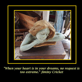 The Dream by Jackie Sleter - Typography Quotes & Sentences ( heart, quotes, dreams, wishes, dream, jimminy cricket, disney )