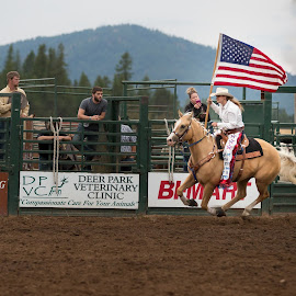 Fast Flag by Craig Lybbert - Sports & Fitness Rodeo/Bull Riding ( flag, horse, rodeo, palamino, cowgirl, usa )