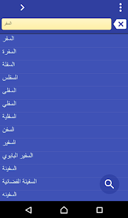 Arabic Hebrew dictionary - screenshot