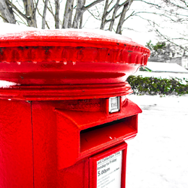 Snowy letterbox by Wendy Richards - City,  Street & Park  Neighborhoods ( red, letterbox, bright, parks, snow, neighbourhood, saturated )