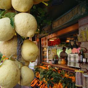 by Maya Farebrother - City,  Street & Park  Markets & Shops