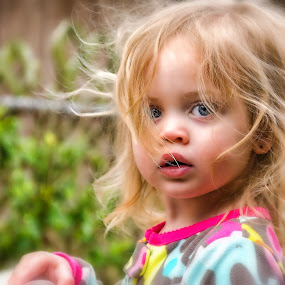 Backyard Bedhead Adventures by Shaun Poston - Babies & Children Toddlers