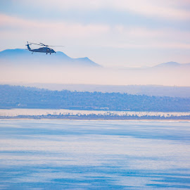 Helicopter over the San Diego bay by Jason Finn - Transportation Helicopters ( copy space, southern california, harbor, smooth, bright, ocean, travel, transportation, usa, coast, exploration, adventure, sky, cold, pink, hazy, helicopter, hdr, purple, california, colors, backgrounds, heights, san diego, blue, bay, outdoors, day, telephoto, lifestyles )