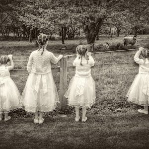 SJD - Human Portraiture -  Bridesmaids.jpg