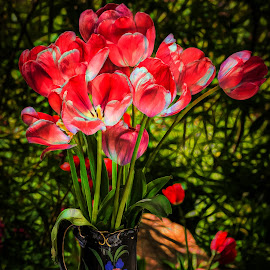 Vase of Tulips by Dave Lipchen - Digital Art Things ( vase of tulips )