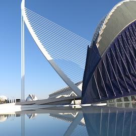 Calatrava buildings, Valencia by Luis Felipe Moreno Vázquez - City,  Street & Park  Street Scenes ( buildings, reflections, architecture, valencia, spain, calatrava )