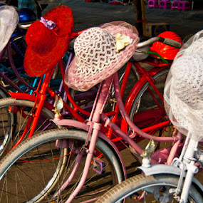 Ladys bicycles by Basuki Mangkusudharma - Transportation Bicycles ( bicycles, ladys, hat )