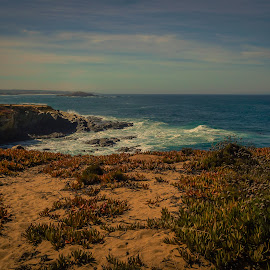 Looking Southwest by Rogério Luís - Landscapes Beaches ( sand, cliff, alentejo, horizon, ocean, beach, october, seascape, portugal, coastline )