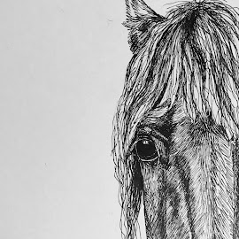 Horse Detail 2 by Anika McFarland - Drawing All Drawing ( ink drawing, detail, horse drawing, horse, ink )