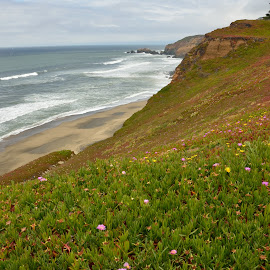 Pacifica Arrival by Erin Perkins-Watry - Landscapes Beaches ( pacifica, california, cliff, pacific, ocean, beach )