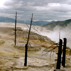 Yellowstone Magic  by Emily Jones - Landscapes Travel ( mountains, yellowstone, nature, hot springs, steam )