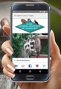 A All Animal Control Tampa - screenshot