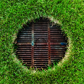 Adaptation by Ben Porway - Artistic Objects Other Objects ( field, grass, green, manhole )