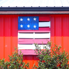 Old Glory by David Jarrard - Artistic Objects Signs ( wooden, art, pallets, palletswood creations )