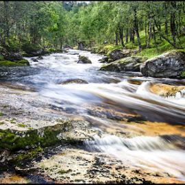 Flow by Neil Gosling - Nature Up Close Water ( water, stream, europe, moving, babble, grass, eddy, white, fairy, blur, shadows, norway, fairies, cold, norwegian, polarised, greenery, trees, rocks )