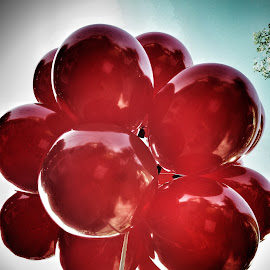 take me higher by Erl de Jose - Artistic Objects Other Objects ( up close, reds, flying colors, balloons, objects )