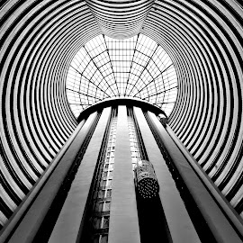 Vortex by Justin Lee - Buildings & Architecture Architectural Detail ( curving, lobby, architecture, skylight, soaring, geometry, modern, elevator, circular, atrium, justin adam lee, contemporary, hotel, high, curved, geometrical, tall )