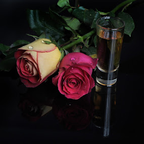 Tequila and Roses by Cristobal Garciaferro Rubio - Food & Drink Alcohol & Drinks ( rose, tequila, drop, tequila cup. glass cup, roses, drops, flowers, flower )