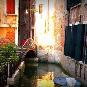 Venezia by Dhannya Jacob - Buildings & Architecture Bridges & Suspended Structures ( pwcbridges )