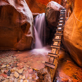 Climbing Waterfalls by Eric Yiskis - Landscapes Caves & Formations ( ladder, slot canyon, national park, utah, waterfall, creek, zion, kanarra )