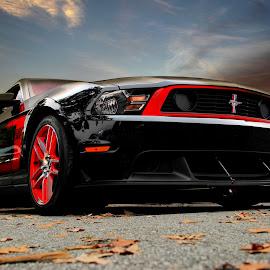 Boss 302 by JEFFREY LORBER - Transportation Automobiles ( mustang, lorberphoto, boss, rust 'n chrome, ford, jeffrey lorber,  )