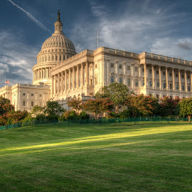 The Capitol by Michael McMurray - Buildings & Architecture Public & Historical ( dc, building, congress, lawn, district of columbia, dome, of the people, us, sunlight, neoclassical, united states, united states of america, washington, government, capitol, sunlit )