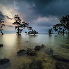 pantai laguna by Rocky Jaya - Landscapes Waterscapes