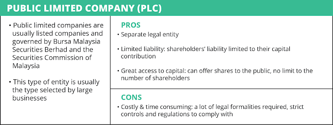 Public Limited Company (PLC)