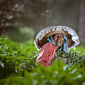 Harvest by Zulkifli Omar - People Portraits of Women